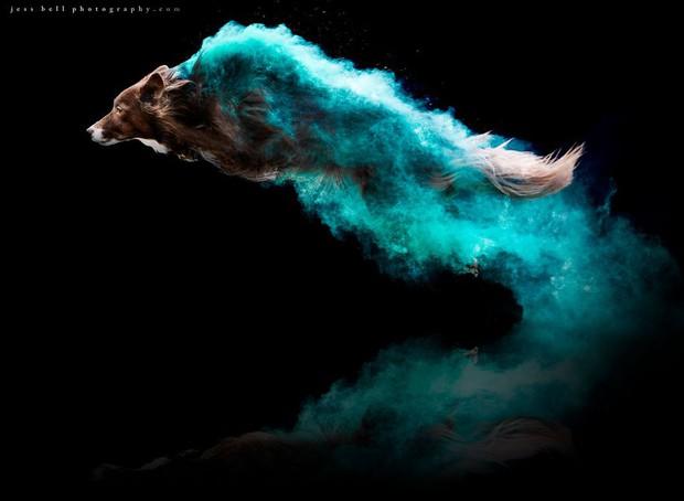 Chụp ảnh boss có tâm level vô cực: Tạo dáng thần sầu với bột màu ảo hơn cả Photoshop - Ảnh 3.