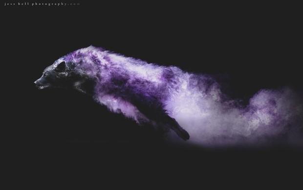 Chụp ảnh boss có tâm level vô cực: Tạo dáng thần sầu với bột màu ảo hơn cả Photoshop - Ảnh 9.