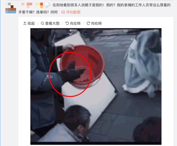 Bị mỉa mai diễn xuất, Hạo Lan Truyện tung hình ảnh Ngô Cẩn Ngôn đang hiến dâng cho... bọ cạp? - Ảnh 4.