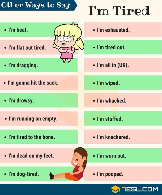 Khi bị đói và mệt thì than như thế nào trong Tiếng Anh cho sang, ngoài Hungry và Tired - Ảnh 1.