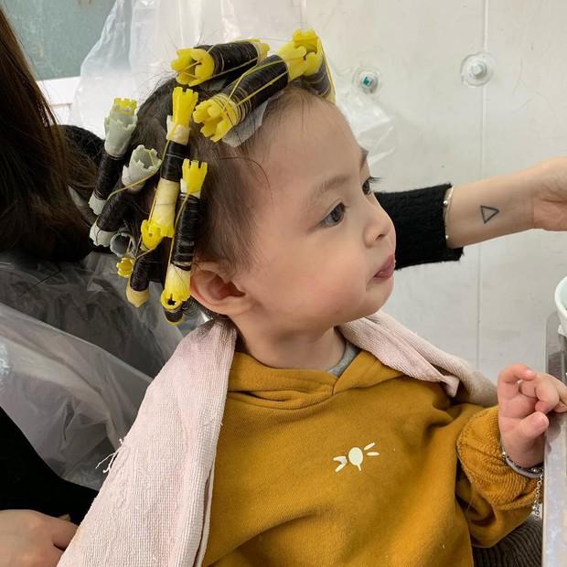 Chẳng kém các cô các chị, bé Cam nhà Kiên Hoàng - Heo Mi Nhon cũng làm tóc điệu đà ăn Tết rồi này! - Ảnh 1.