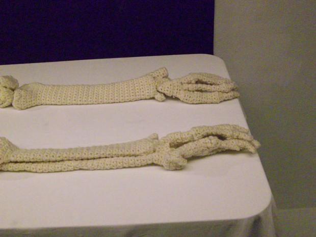 Cô nàng rảnh rỗi đan nguyên một bộ xương bằng len, có đủ cả lục phủ ngũ tạng và… một bữa ăn đang tiêu hóa dở - Ảnh 7.
