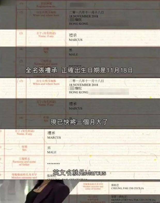 Trương Bá Chi nổi trận lôi đình vì truyền thông Hong Kong bới móc thông tin cá nhân của con trai thứ 3 - Ảnh 1.