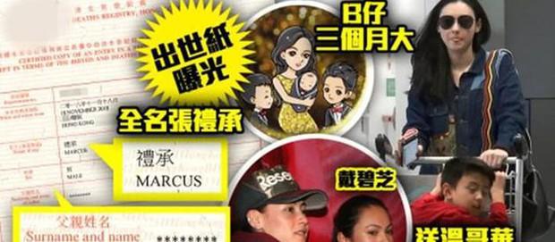 Trương Bá Chi nổi trận lôi đình vì truyền thông Hong Kong bới móc thông tin cá nhân của con trai thứ 3 - Ảnh 2.