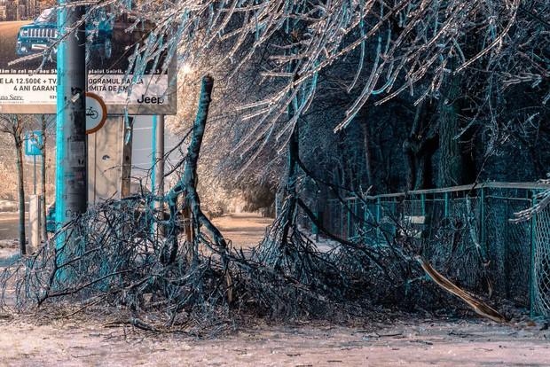 Sau một trận mưa băng giá, thành phố Bucharest bỗng biến thành phim kinh dị hậu tận thế - Ảnh 4.
