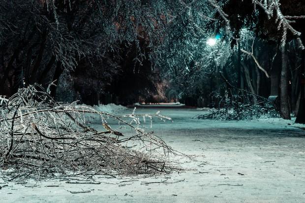 Sau một trận mưa băng giá, thành phố Bucharest bỗng biến thành phim kinh dị hậu tận thế - Ảnh 9.
