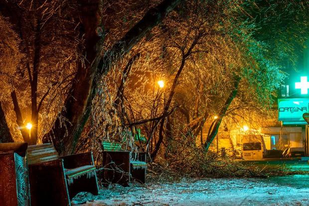Sau một trận mưa băng giá, thành phố Bucharest bỗng biến thành phim kinh dị hậu tận thế - Ảnh 11.