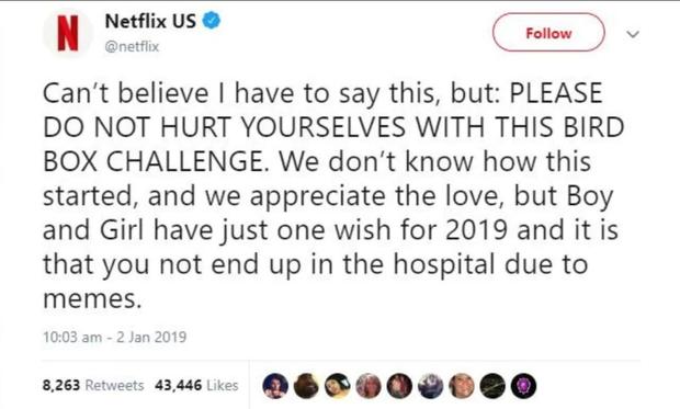 """Nhiễm phim """"Bird Box"""" tới mức nguy hiểm báo động, Netflix phải khuyến cáo người xem dừng lại - Ảnh 6."""