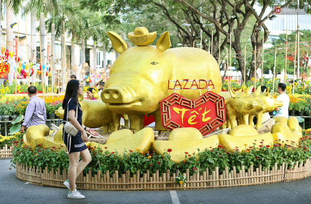 Ngắm đàn lợn với biểu cảm buồn cả thế giới ngộ nghĩnh và hài hước trên đường hoa xuân quận 7 - Ảnh 2.