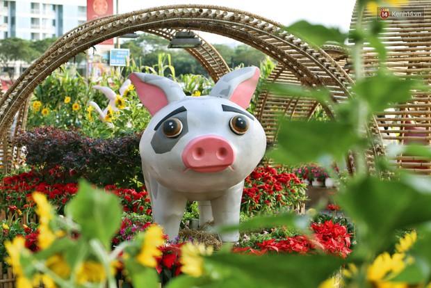 Ngắm đàn lợn với biểu cảm buồn cả thế giới ngộ nghĩnh và hài hước trên đường hoa xuân quận 7 - Ảnh 5.