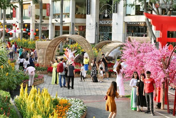 Ngắm đàn lợn với biểu cảm buồn cả thế giới ngộ nghĩnh và hài hước trên đường hoa xuân quận 7 - Ảnh 8.