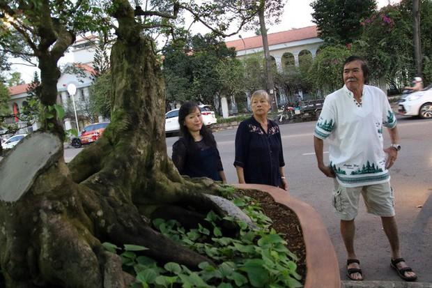 Cận cảnh cây khế đầu heo có giá nửa tỷ đồng được bày bán thu hút người dân Sài Gòn - Ảnh 14.