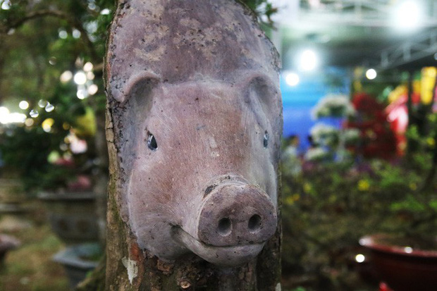 Cận cảnh cây khế đầu heo có giá nửa tỷ đồng được bày bán thu hút người dân Sài Gòn - Ảnh 7.