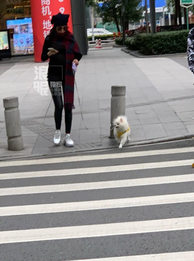 Chính thức lộ bụng tháng cuối thai kỳ với đồ bó sát, Trương Hinh Dư vẫn gây chú ý với đôi chân siêu thon - Ảnh 2.
