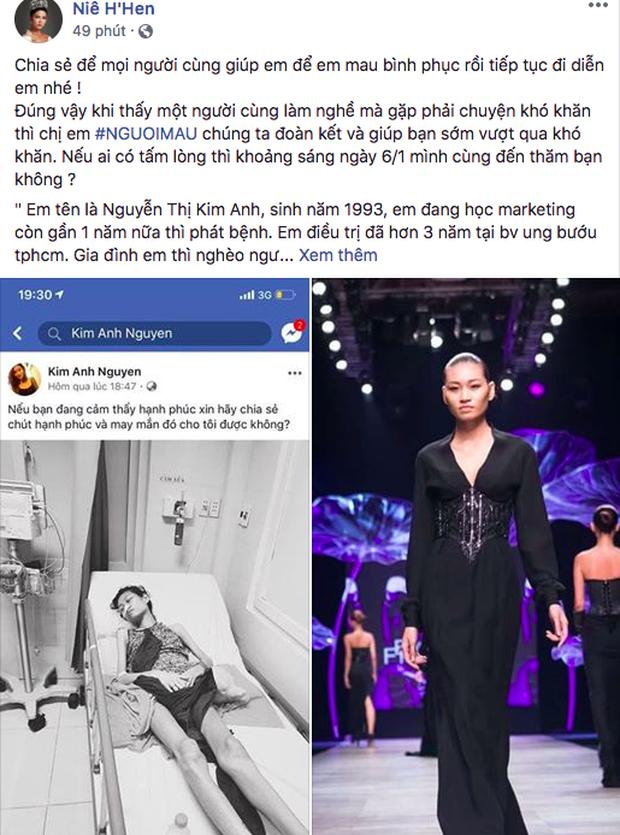 HHen Niê, Lê Thúy và sao Vbiz kêu gọi hỗ trợ người mẫu trẻ 3 năm chống chọi với căn bệnh ung thư - Ảnh 1.