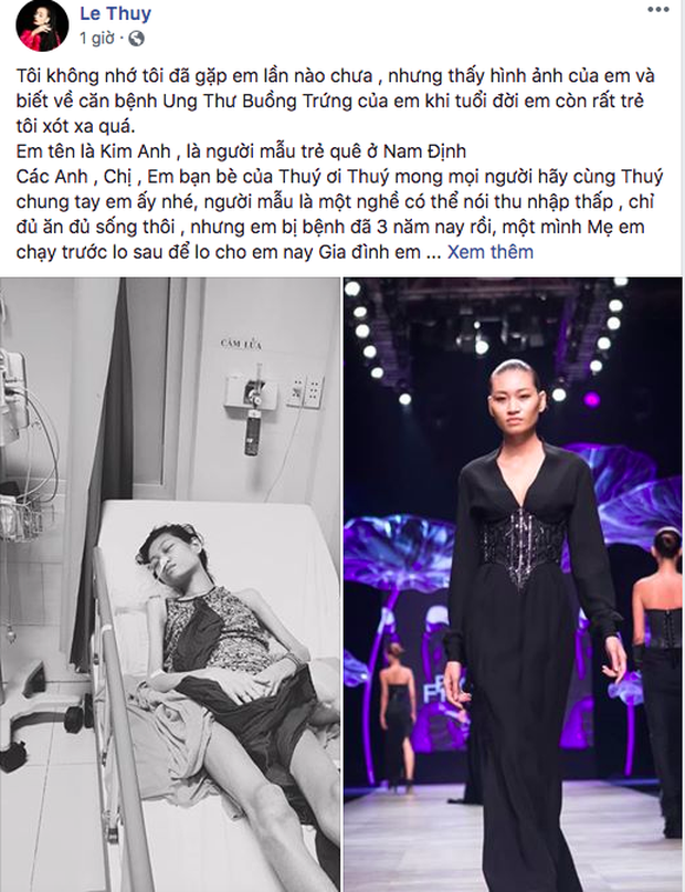 HHen Niê, Lê Thúy và sao Vbiz kêu gọi hỗ trợ người mẫu trẻ 3 năm chống chọi với căn bệnh ung thư - Ảnh 2.