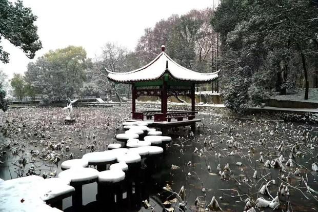 Tuyết rơi trắng trời tạo nên khung cảnh đẹp nao lòng tại các trường đại học - Ảnh 5.