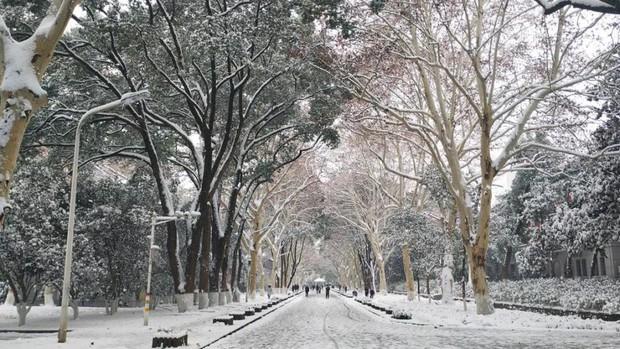 Tuyết rơi trắng trời tạo nên khung cảnh đẹp nao lòng tại các trường đại học - Ảnh 9.