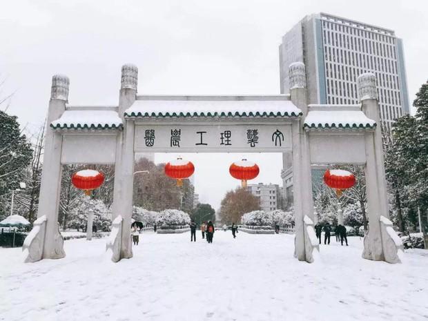 Tuyết rơi trắng trời tạo nên khung cảnh đẹp nao lòng tại các trường đại học - Ảnh 12.