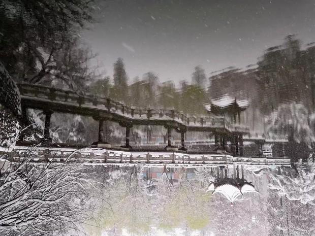 Tuyết rơi trắng trời tạo nên khung cảnh đẹp nao lòng tại các trường đại học - Ảnh 13.