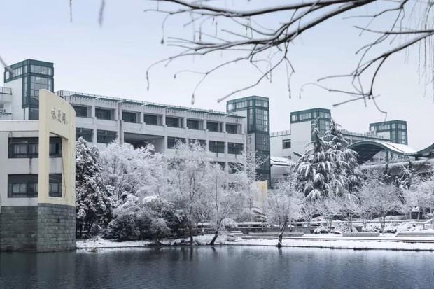 Tuyết rơi trắng trời tạo nên khung cảnh đẹp nao lòng tại các trường đại học - Ảnh 15.