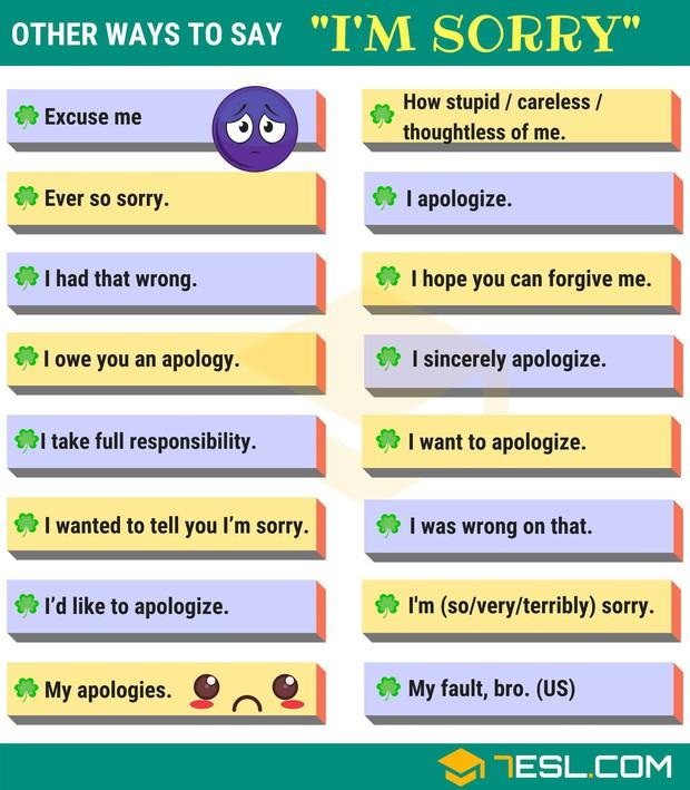 Mỗi câu Xin lỗi thôi nhưng có tận 35 cách nói khác nhau trong Tiếng Anh - Ảnh 1.