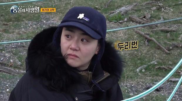 Từng được tung hô là yêu tinh hack tuổi, Moon Geun Young gây sốc vì tăng cân và già nua sau thời gian vắng bóng - Ảnh 2.