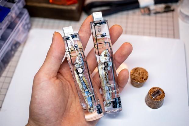Nhật Bản thứ gì cũng dị: Tưởng USB làm từ não cá thật, hóa ra là đồ giả mạo làm cảnh - Ảnh 1.