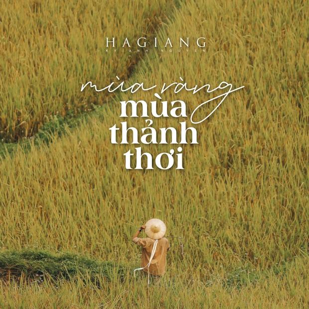 Review chuyến đi Hà Giang săn mùa vàng, chàng photographer khiến dân tình mê như điếu đổ với bộ ảnh đẹp mê hồn - Ảnh 1.