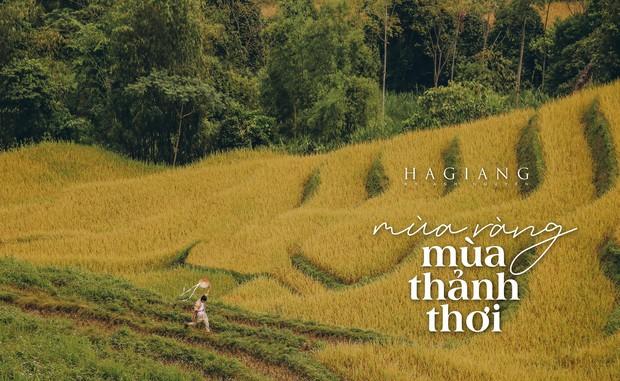 Review chuyến đi Hà Giang săn mùa vàng, chàng photographer khiến dân tình mê như điếu đổ với bộ ảnh đẹp mê hồn - Ảnh 3.
