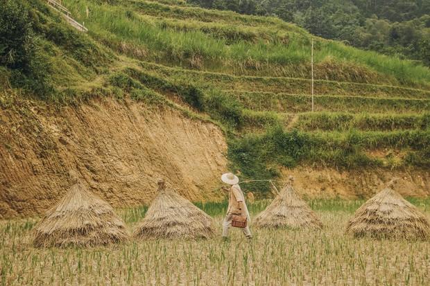 Review chuyến đi Hà Giang săn mùa vàng, chàng photographer khiến dân tình mê như điếu đổ với bộ ảnh đẹp mê hồn - Ảnh 13.