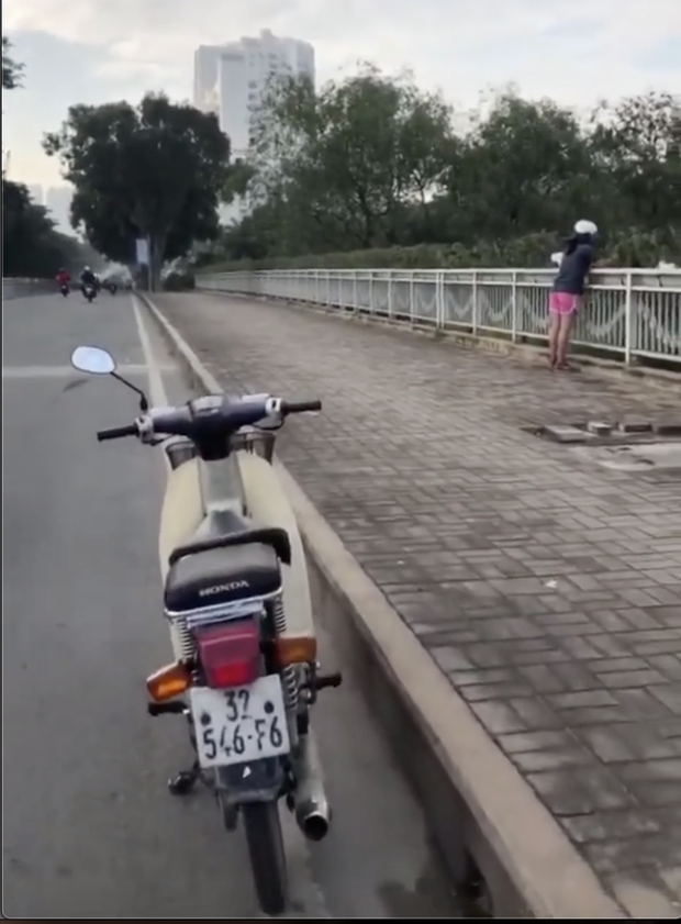Người phụ nữ ngang nhiên bứng trộm cây cảnh ở Phú Mỹ Hưng, bị nhắc nhở còn cố chấp: Em chỉ xin 1, 2 cây thôi mà - Ảnh 4.