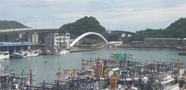Cầu dây văng 140m ở Đài Loan bất ngờ đổ sập khiến 20 người bị thương, nhiều nạn nhân vẫn mắc kẹt - Ảnh 2.