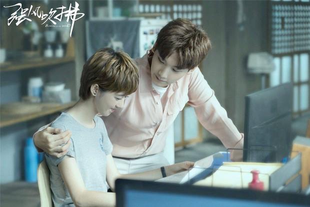 Trùm phim Hoa Ngữ 2019 gọi tên trai đẹp Hình Chiêu Lâm: 4 vai toàn đóng chính ai xem cũng đê mê? - Ảnh 1.