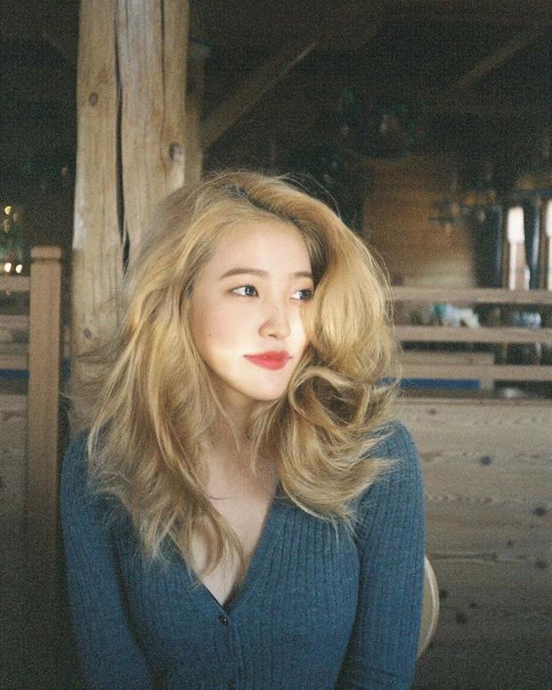 Idol Hàn nhuộm tóc rất nhiều nhưng tóc họ lúc nào cũng mượt mà đáng ghen tị nhờ 5 bí kíp chăm sóc này - Ảnh 5.