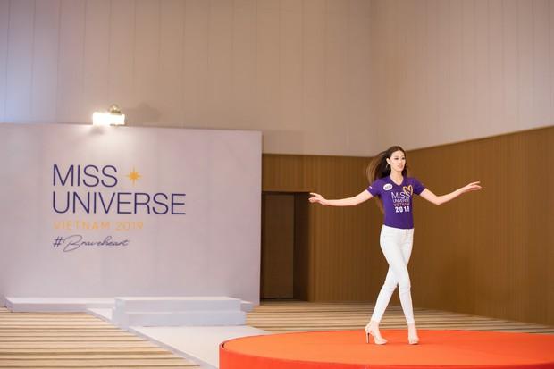 Công bằng nào cho Thúy Vân tại Hoa hậu Hoàn vũ VN: Muốn thử thách bản thân thì lại bị chê thiếu thông minh? - Ảnh 3.