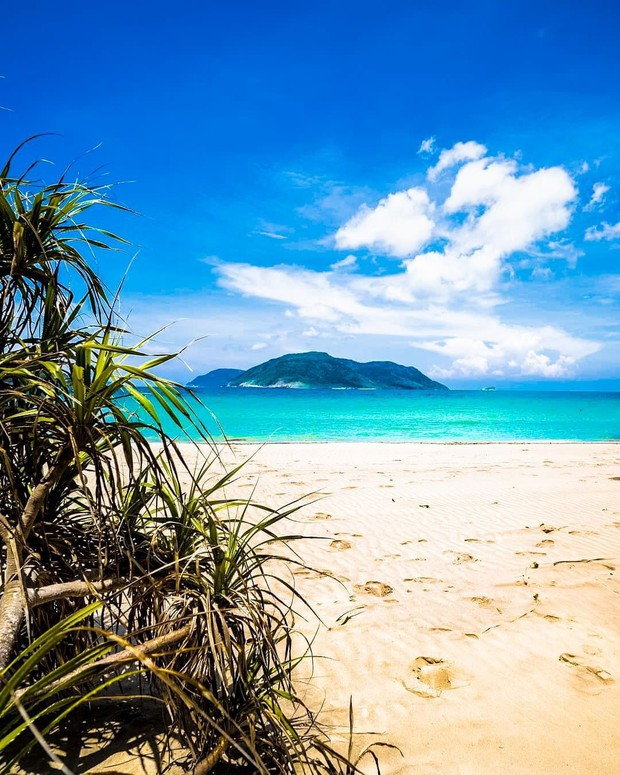 Hòn đảo duy nhất của Việt Nam bất ngờ lọt top những nơi có làn nước trong xanh nhất thế giới, bạn đã đi chưa? - Ảnh 4.