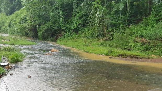 Nước sạch Hà Nội có mùi lạ: Phát hiện bất ngờ từ đầu nguồn gần nhà máy nước Sông Đà - Ảnh 1.