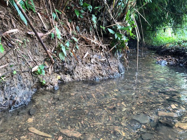 Cận cảnh nhiều mảng bám giống dầu nhớt quyện trong dòng nước dẫn vào nhà máy nước sông Đà - Ảnh 2.