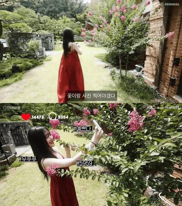 Những hình ảnh Sulli trong căn nhà nơi cô chọn cách kết thúc cuộc đời bằng cách tự tử khiến ai cũng xót xa - Ảnh 2.