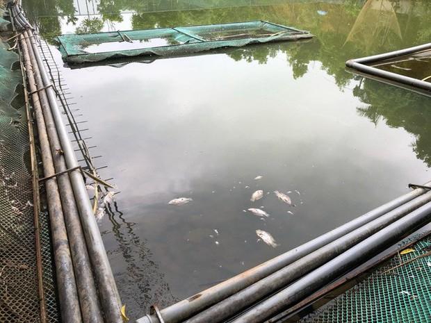 Cận cảnh nhiều mảng bám giống dầu nhớt quyện trong dòng nước dẫn vào nhà máy nước sông Đà - Ảnh 12.