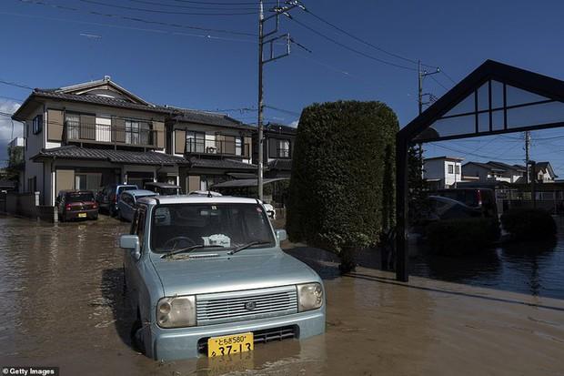 Cảnh tan hoang vì siêu bão Hagibis ở Nhật Bản nhìn từ trên cao - Ảnh 14.