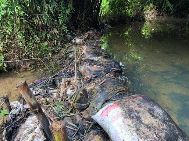 Cận cảnh nhiều mảng bám giống dầu nhớt quyện trong dòng nước dẫn vào nhà máy nước sông Đà - Ảnh 5.