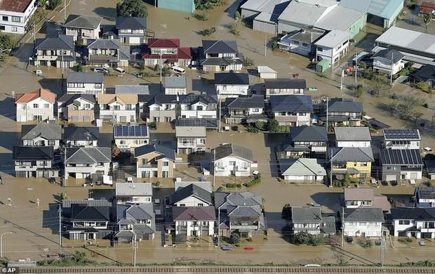 Cảnh tan hoang vì siêu bão Hagibis ở Nhật Bản nhìn từ trên cao - Ảnh 6.