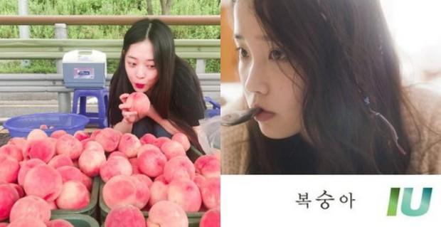 Netizen chửi bới IU sau khi Sulli qua đời, nào đâu biết nữ ca sĩ chính là bạn thân luôn ở bên Sulli mặc scandal, sáng tác rất nhiều bài hát về bạn mình - Ảnh 3.