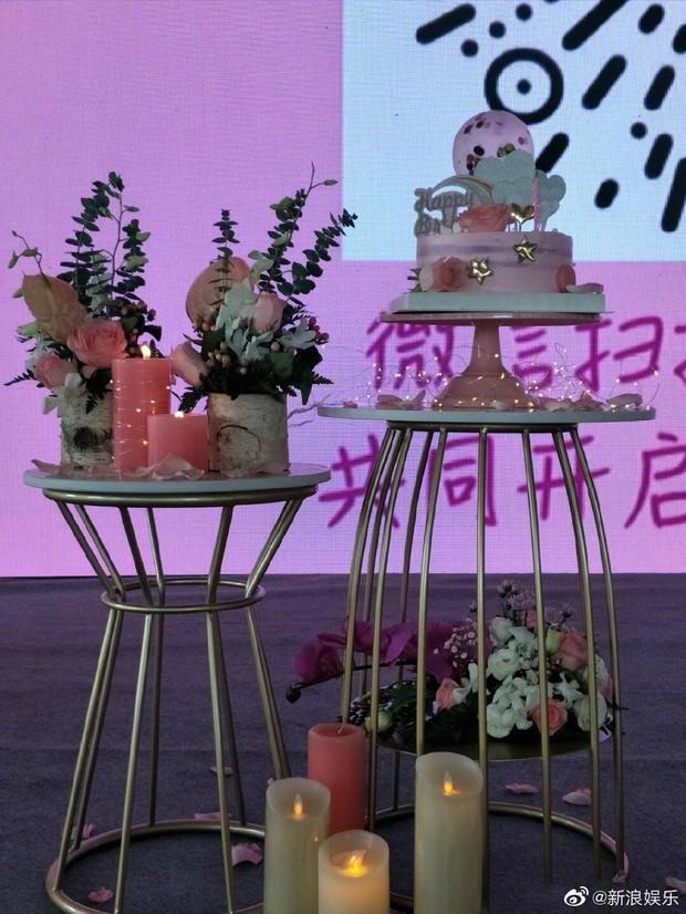 Ngày buồn không kém của Cbiz: Kiều Nhậm Lương tự tử vì trầm cảm ở tuổi 29, hôm nay fan tổ chức sinh nhật màu hồng cho anh - Ảnh 5.