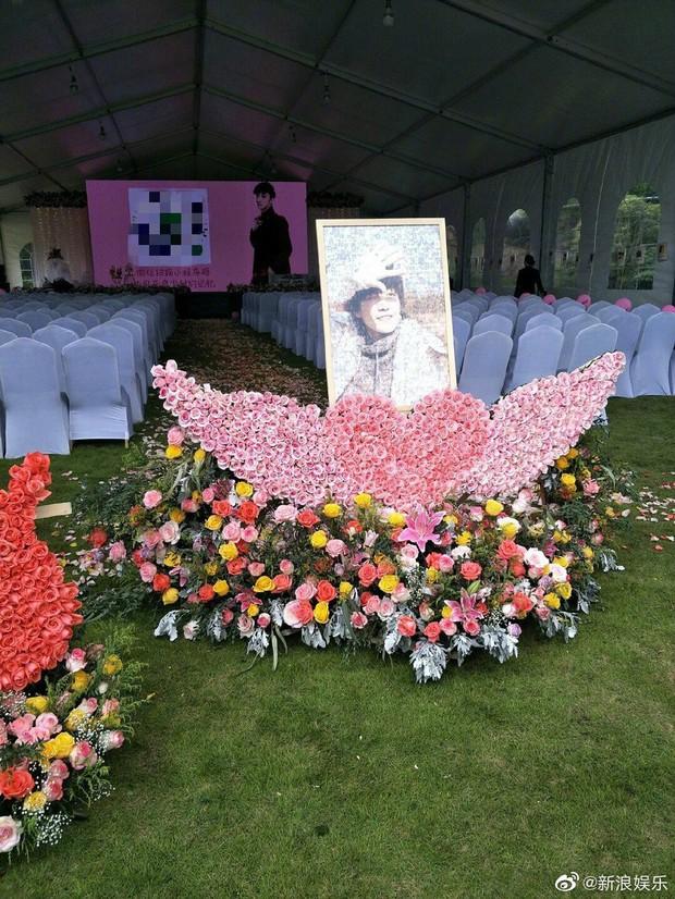 Ngày buồn không kém của Cbiz: Kiều Nhậm Lương tự tử vì trầm cảm ở tuổi 29, hôm nay fan tổ chức sinh nhật màu hồng cho anh - Ảnh 4.