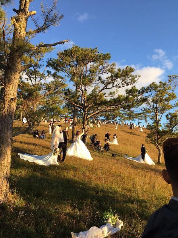 """Choáng toàn tập với khung cảnh """"1 mét vuông 12 cô dâu"""" ở Đà Lạt mùa cỏ hồng, bình minh 30 phút mà có 50 đôi chụp ảnh cưới - Ảnh 8."""