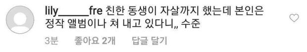 IU - người bạn thân của Sulli cũng đã quyết định ngưng phát hành album mới sau khi bị dân mạng chửi bới vô cớ - Ảnh 2.