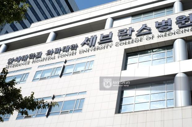 Độc quyền từ Hàn Quốc: Hé lộ thời gian chính xác lễ tang của Sulli, dàn vệ sĩ bảo vệ nghiêm ngặt trước giờ G - Ảnh 7.